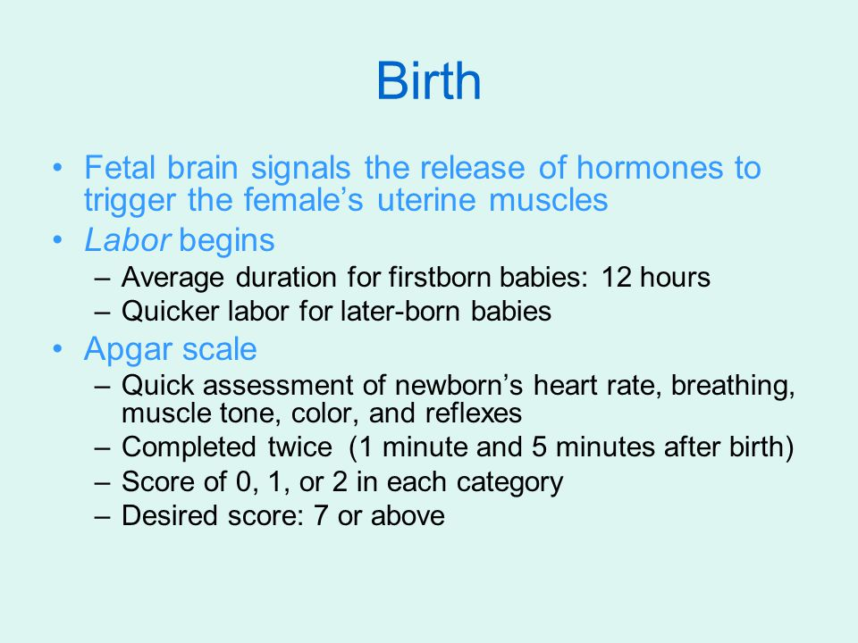 Birth Fetal brain signals the release of hormones to trigger the female's uterine muscles Labor begins –Average duration for firstborn babies: 12 hour