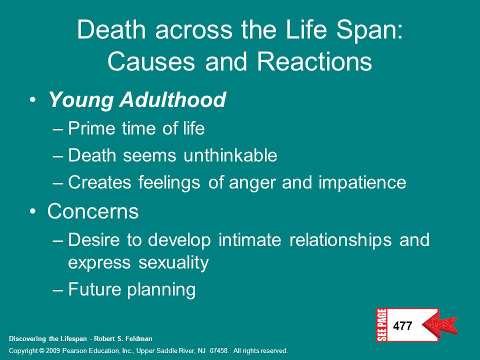 Discovering the Lifespan - Robert S.