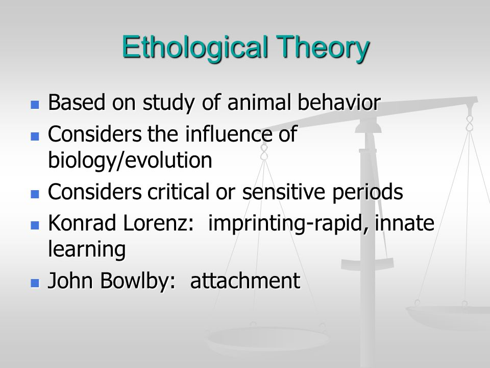 Ethological Theory Based on study of animal behavior Based on study of animal behavior Considers the influence of biology/evolution Considers the infl