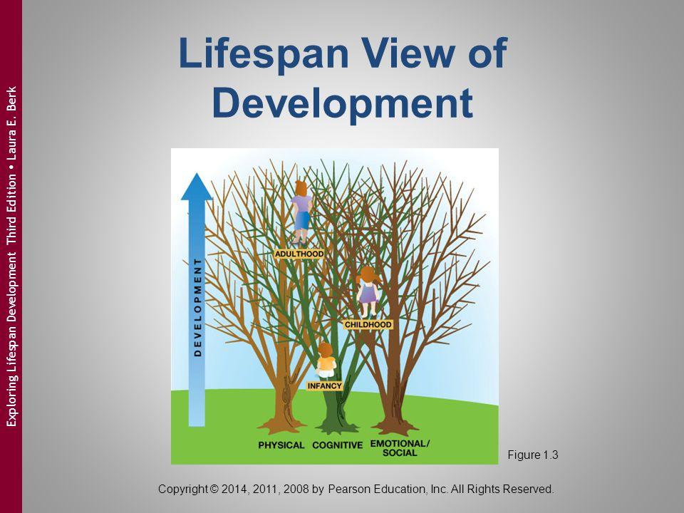 Copyright © 2014, 2011, 2008 by Pearson Education, Inc. All Rights Reserved. Exploring Lifespan Development Third Edition  Laura E. Berk Lifespan Vie