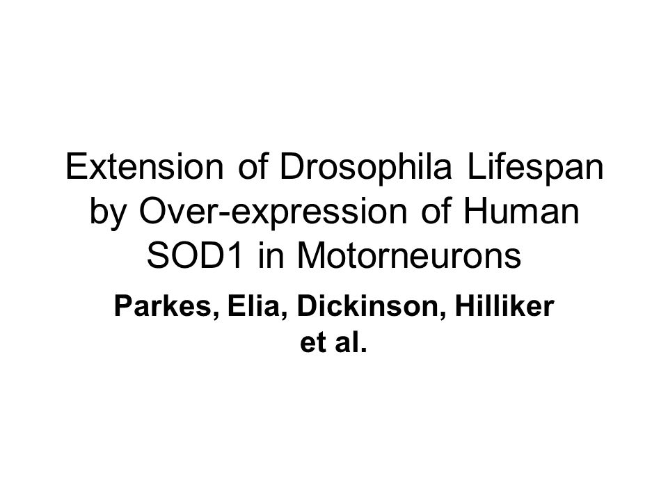 Extension of Drosophila Lifespan by Over-expression of Human SOD1 in Motorneurons Parkes, Elia, Dickinson, Hilliker et al.