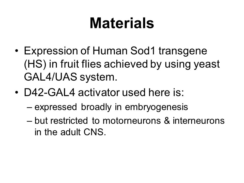 Materials Expression of Human Sod1 transgene (HS) in fruit flies achieved by using yeast GAL4/UAS system.