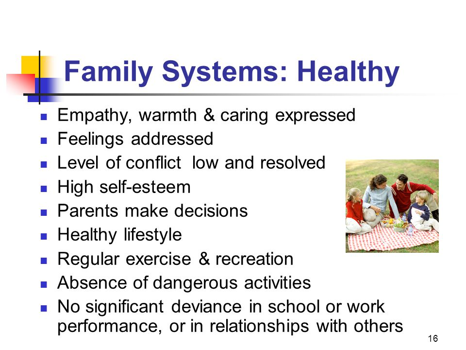 16 Family Systems: Healthy Empathy, warmth & caring expressed Feelings addressed Level of conflict low and resolved High self-esteem Parents make decisions Healthy lifestyle Regular exercise & recreation Absence of dangerous activities No significant deviance in school or work performance, or in relationships with others