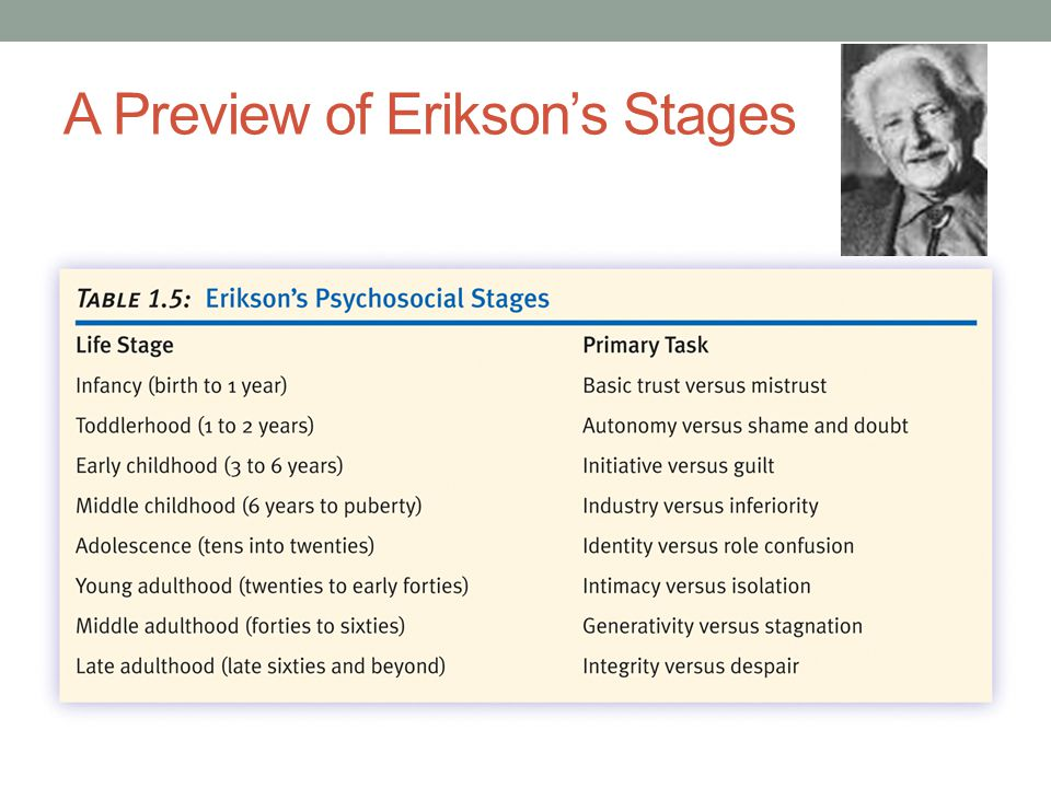 A Preview of Erikson's Stages
