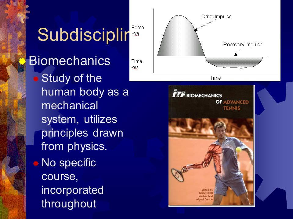 Subdisciplines  Biomechanics  Study of the human body as a mechanical system, utilizes principles drawn from physics.