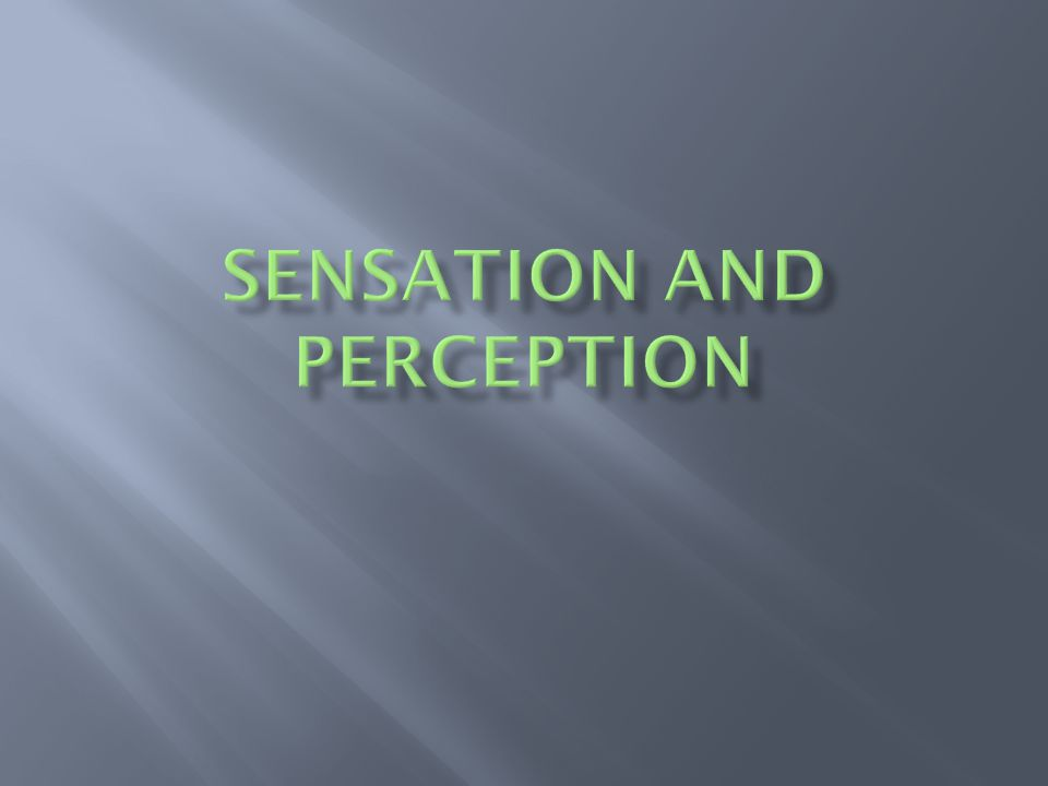  Sense organs  See, hear, taste, smell, touch, balance, and experience the world  Sensory receptor cells transmit sensation  Perception – interpreting information and forming images  Stimulus Sensation and Perception