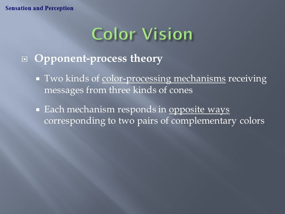 Opponent-process theory  Two kinds of color-processing mechanisms receiving messages from three kinds of cones  Each mechanism responds in opposite ways corresponding to two pairs of complementary colors Sensation and Perception