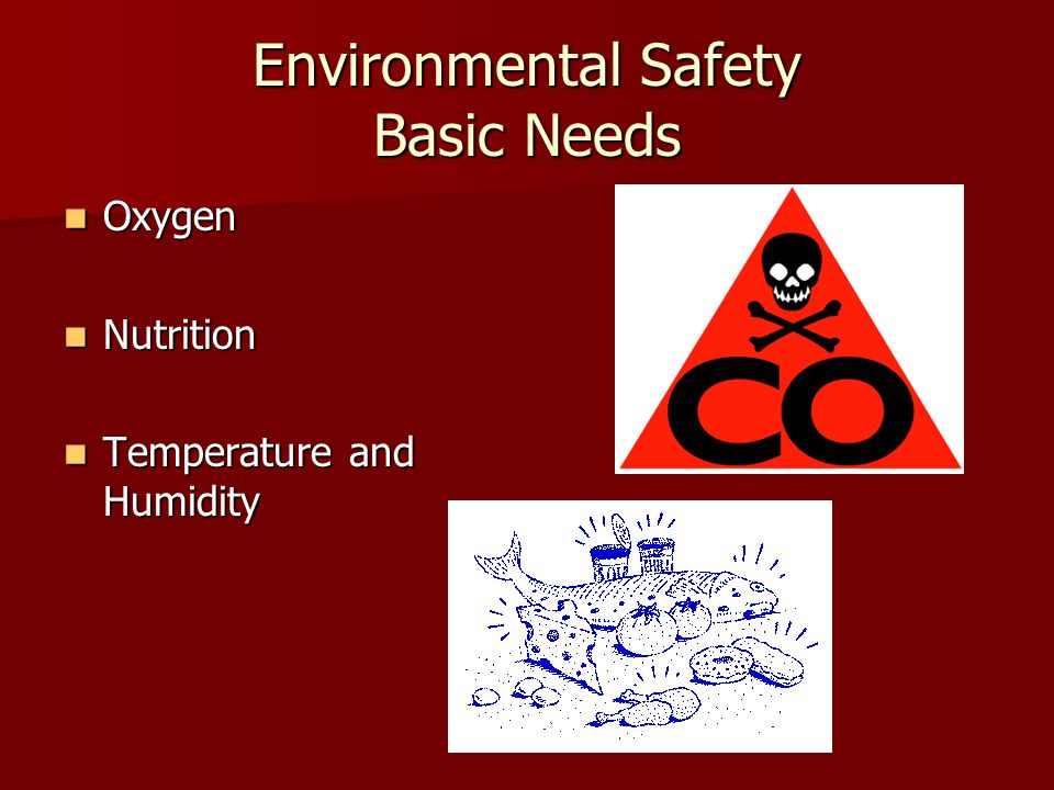 Environmental Safety Basic Needs Oxygen Oxygen Nutrition Nutrition Temperature and Humidity Temperature and Humidity