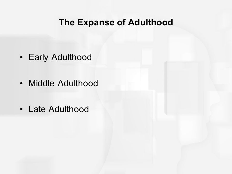 The Expanse of Adulthood Early Adulthood Middle Adulthood Late Adulthood