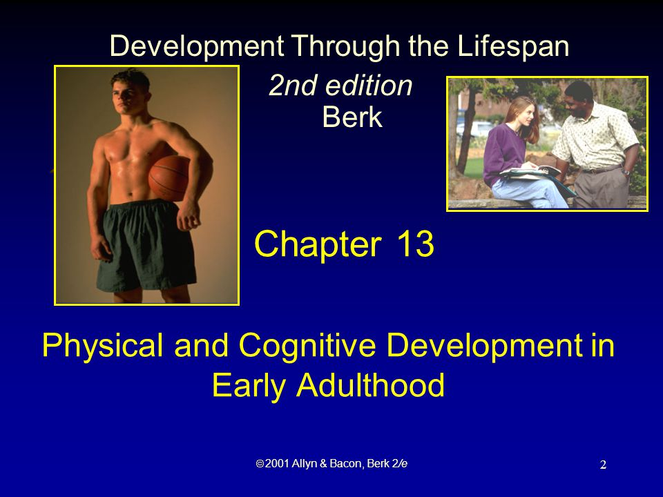  2001 Allyn & Bacon, Berk 2/e 2 Chapter 13 Physical and Cognitive Development in Early Adulthood Development Through the Lifespan 2nd edition Berk