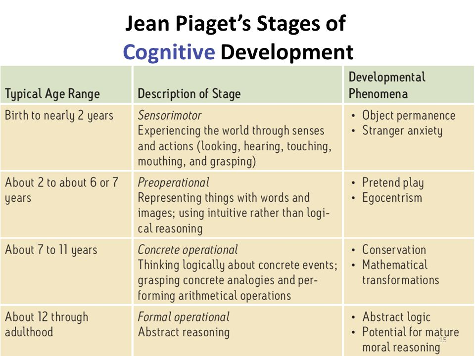 Jean Piaget's Stages of Cognitive Development 15