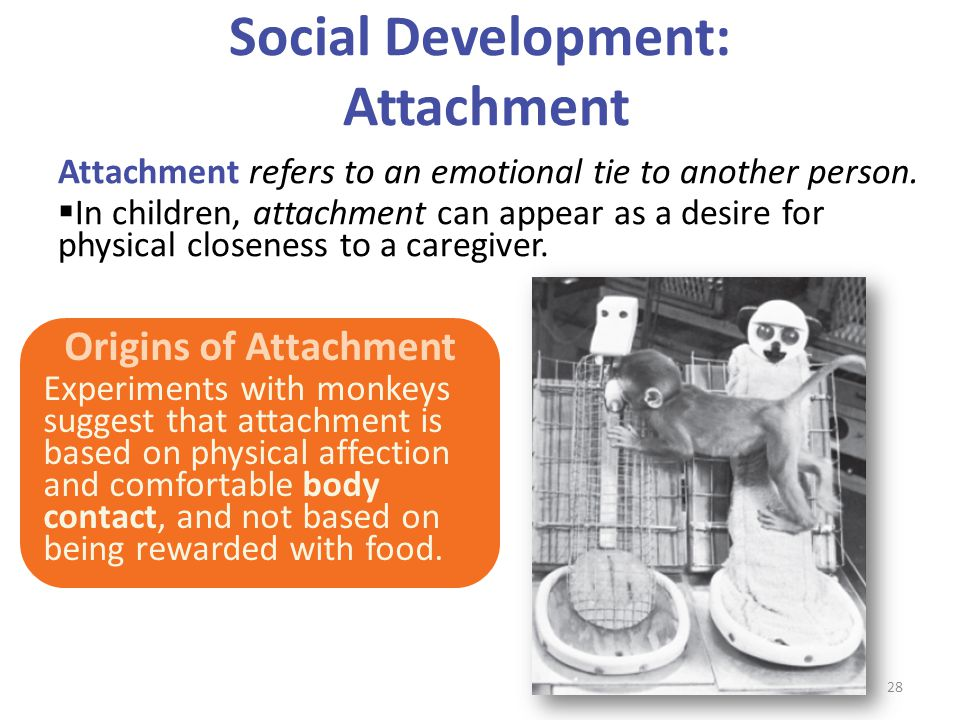 Social Development: Attachment Attachment refers to an emotional tie to another person.  In children, attachment can appear as a desire for physical