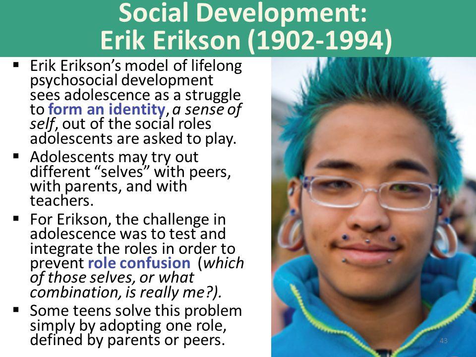 Social Development: Erik Erikson (1902-1994)  Erik Erikson's model of lifelong psychosocial development sees adolescence as a struggle to form an ide