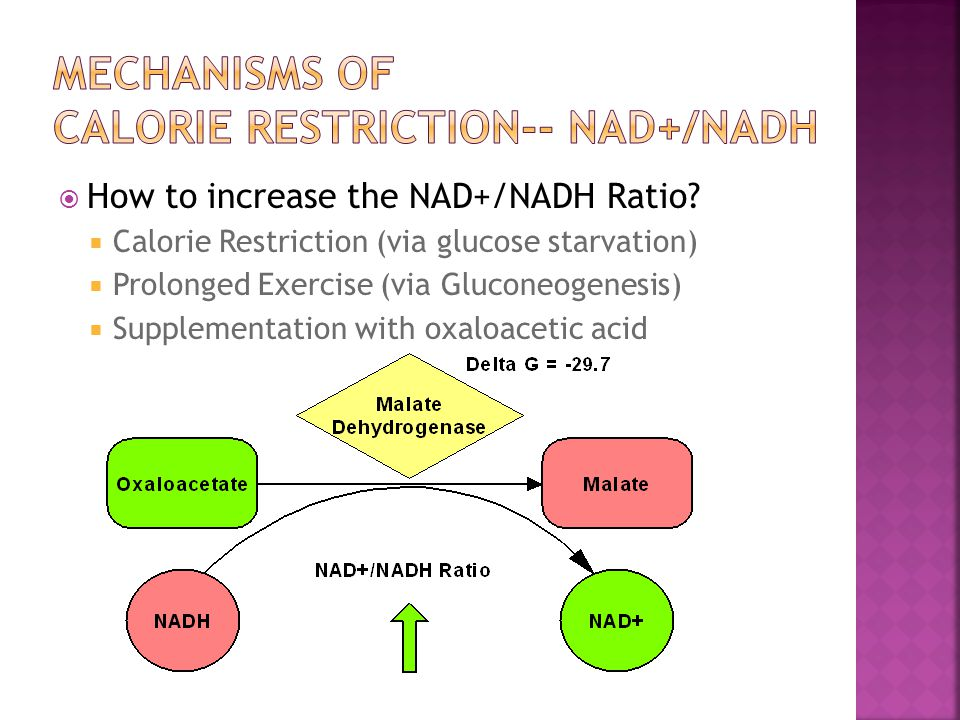  How to increase the NAD+/NADH Ratio.