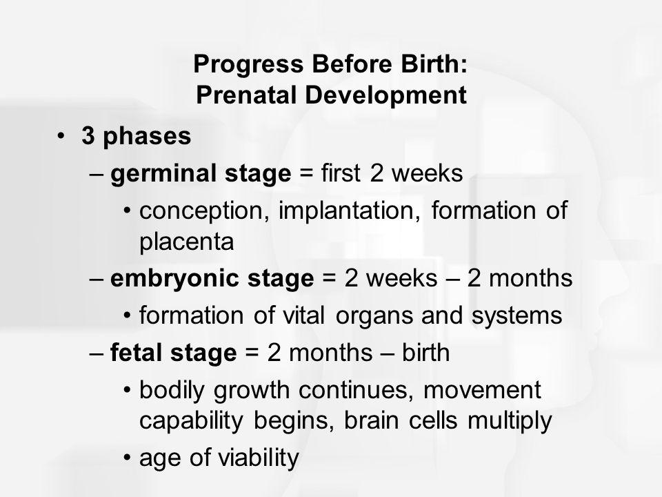 Figure 11.1 Overview of fetal development