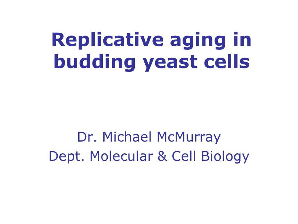 Outline Intro to yeast replicative aging Senescence factors: molecular determinants of yeast longevity and senescence – longevity: how long an individual survives – senescence: the breakdown of normal physiological function with age What can yeast aging tell us about aging in humans?