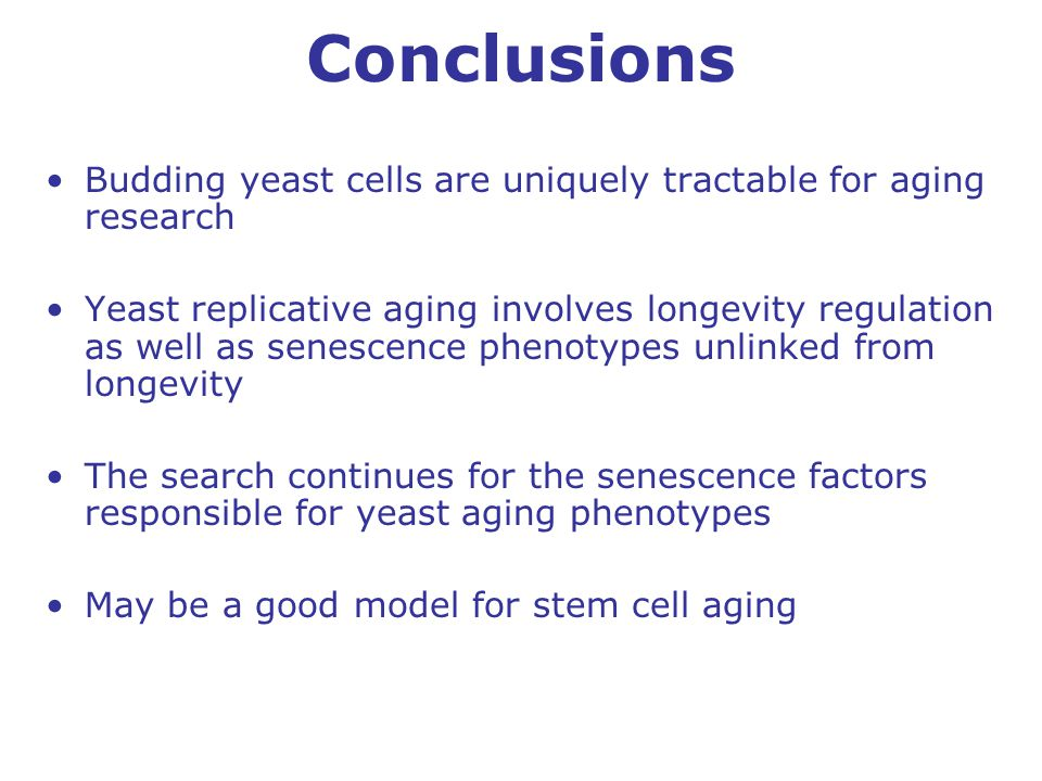 Conclusions Budding yeast cells are uniquely tractable for aging research Yeast replicative aging involves longevity regulation as well as senescence phenotypes unlinked from longevity The search continues for the senescence factors responsible for yeast aging phenotypes May be a good model for stem cell aging