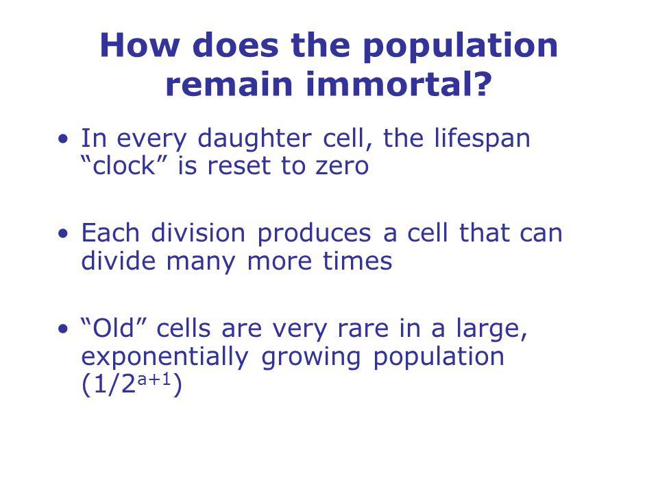 What limits yeast lifespan.