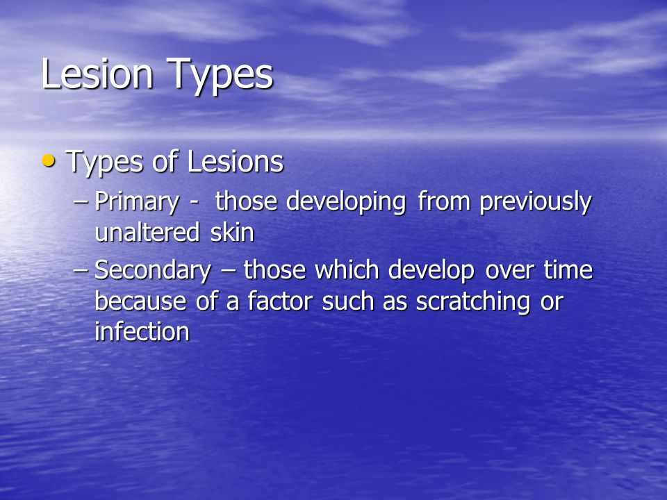 Lesion Types Types of Lesions Types of Lesions –Primary - those developing from previously unaltered skin –Secondary – those which develop over time b