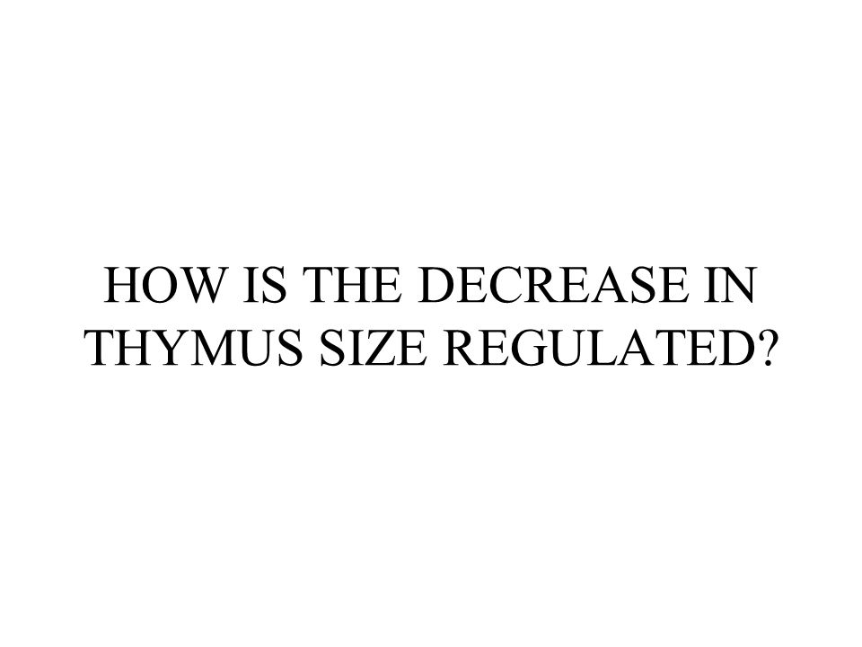 HOW IS THE DECREASE IN THYMUS SIZE REGULATED