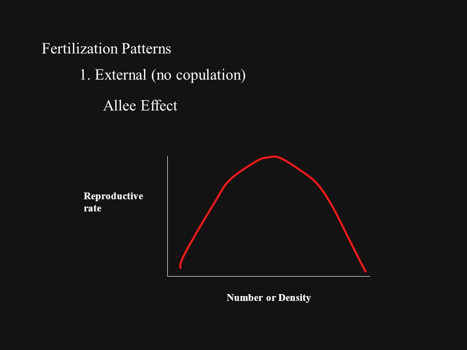 Fertilization Patterns 1. External (no copulation) Allee Effect Reproductive rate Number or Density