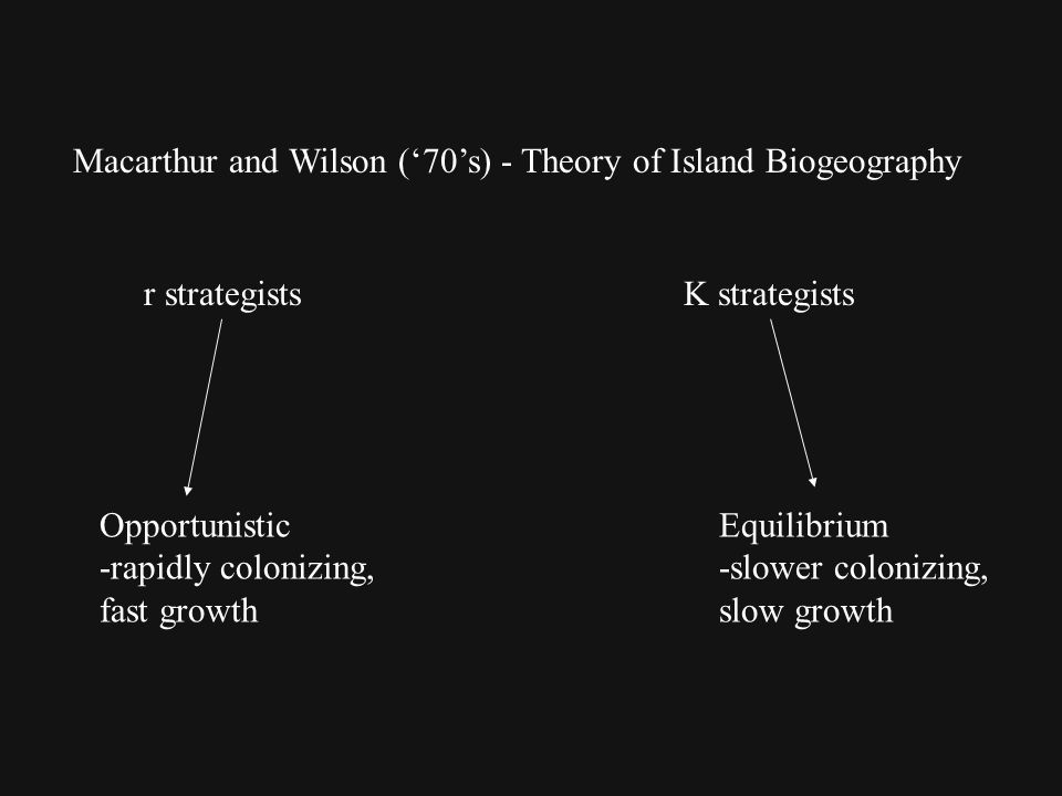 Macarthur and Wilson ('70's) - Theory of Island Biogeography r strategists K strategists Equilibrium -slower colonizing, slow growth Opportunistic -rapidly colonizing, fast growth