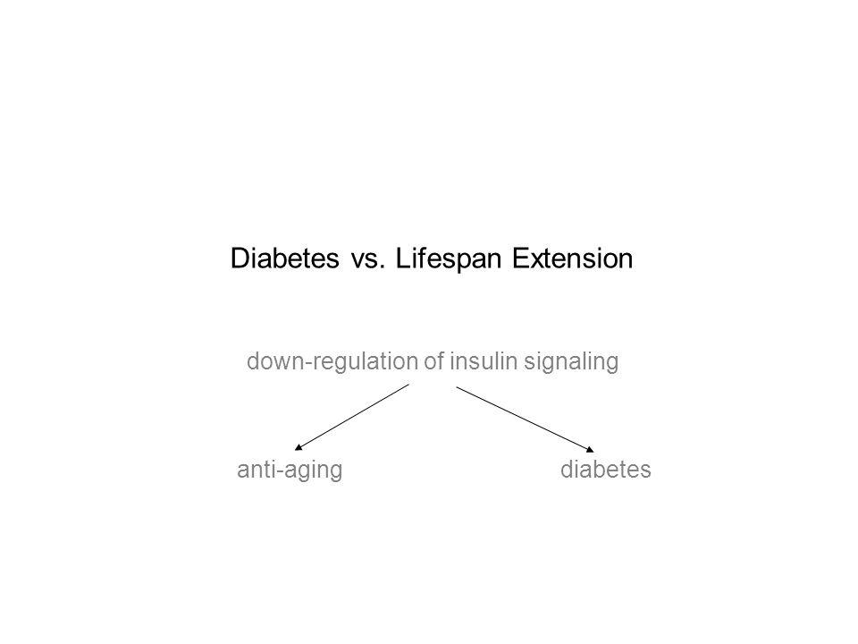 Diabetes vs. Lifespan Extension down-regulation of insulin signaling anti-aging diabetes