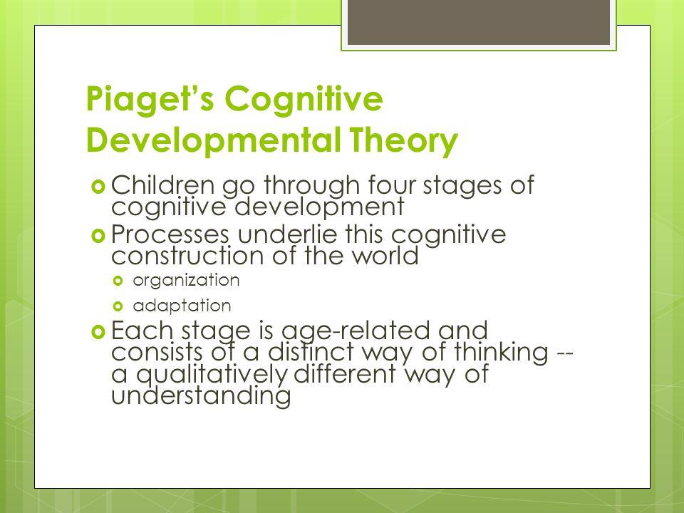 Piaget's Cognitive Developmental Theory  Children go through four stages of cognitive development  Processes underlie this cognitive construction of