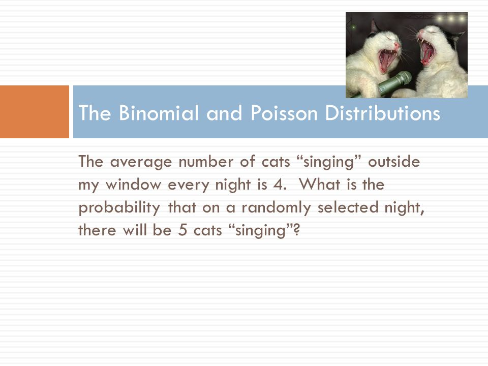 The average number of cats singing outside my window every night is 4.