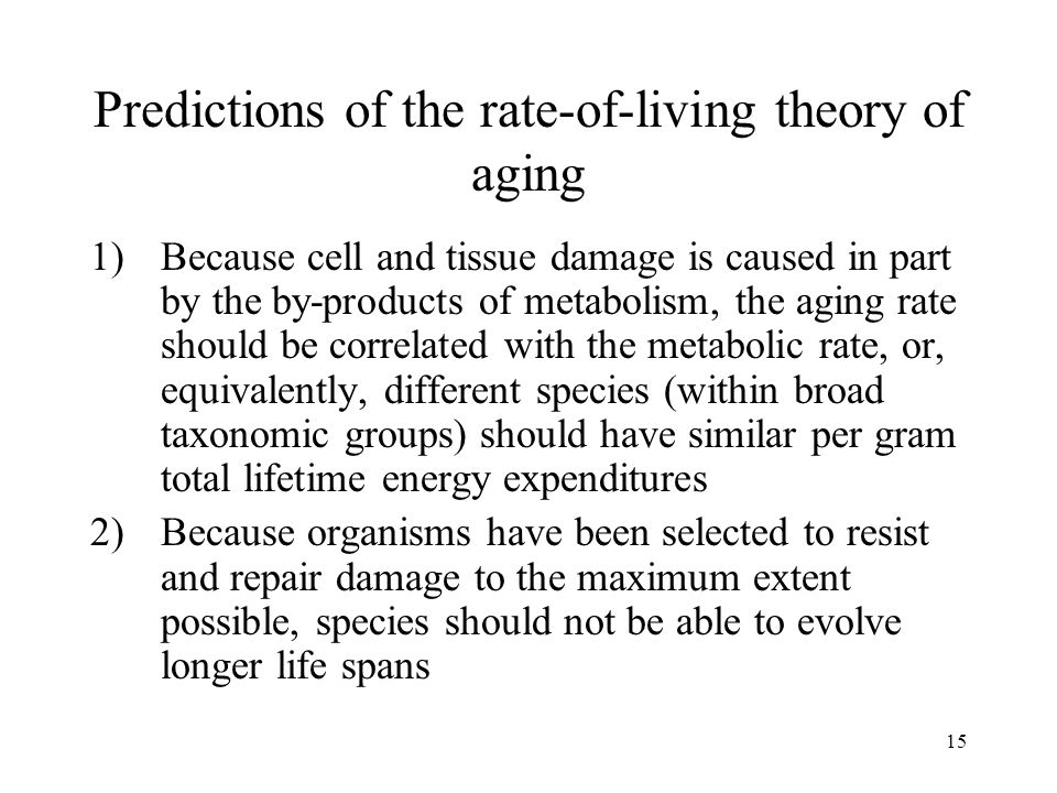 15 Predictions of the rate-of-living theory of aging 1)Because cell and tissue damage is caused in part by the by-products of metabolism, the aging ra