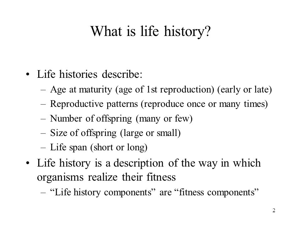 2 What is life history? Life histories describe: –Age at maturity (age of 1st reproduction) (early or late) –Reproductive patterns (reproduce once or
