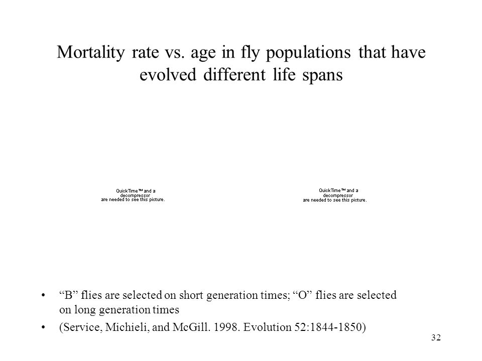 "32 Mortality rate vs. age in fly populations that have evolved different life spans ""B"" flies are selected on short generation times; ""O"" flies are se"