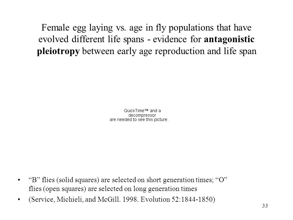 33 Female egg laying vs. age in fly populations that have evolved different life spans - evidence for antagonistic pleiotropy between early age reprod