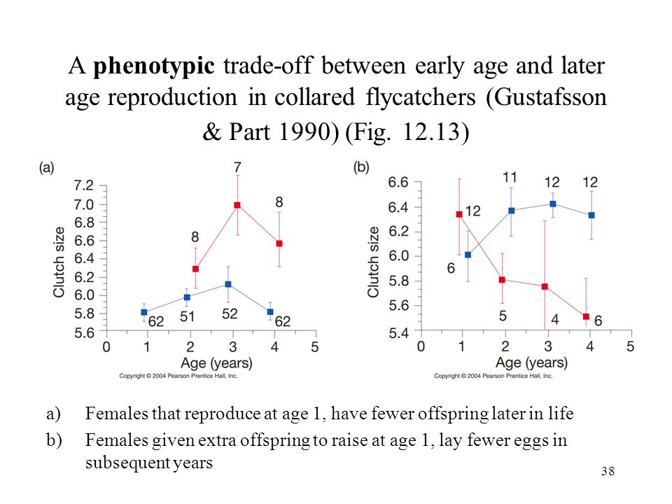 38 A phenotypic trade-off between early age and later age reproduction in collared flycatchers (Gustafsson & Part 1990) (Fig. 12.13) a)Females that re