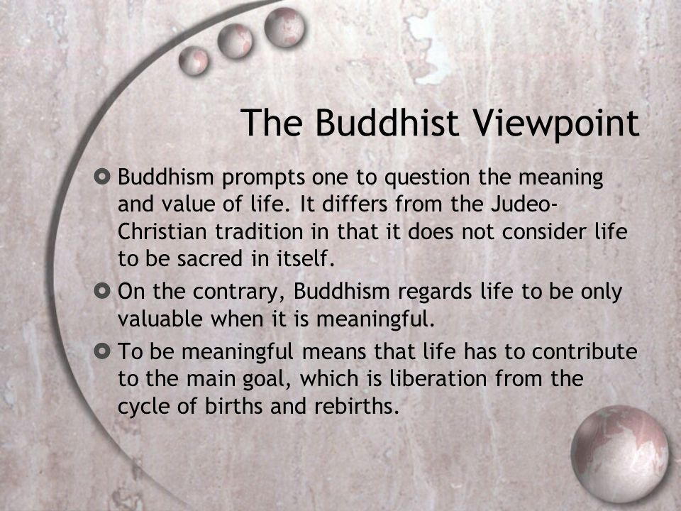 The Buddhist Viewpoint  Buddhism prompts one to question the meaning and value of life.