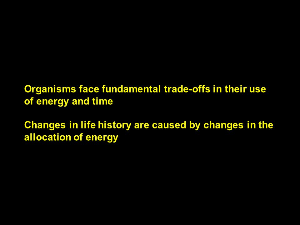 Organisms face fundamental trade-offs in their use of energy and time Changes in life history are caused by changes in the allocation of energy