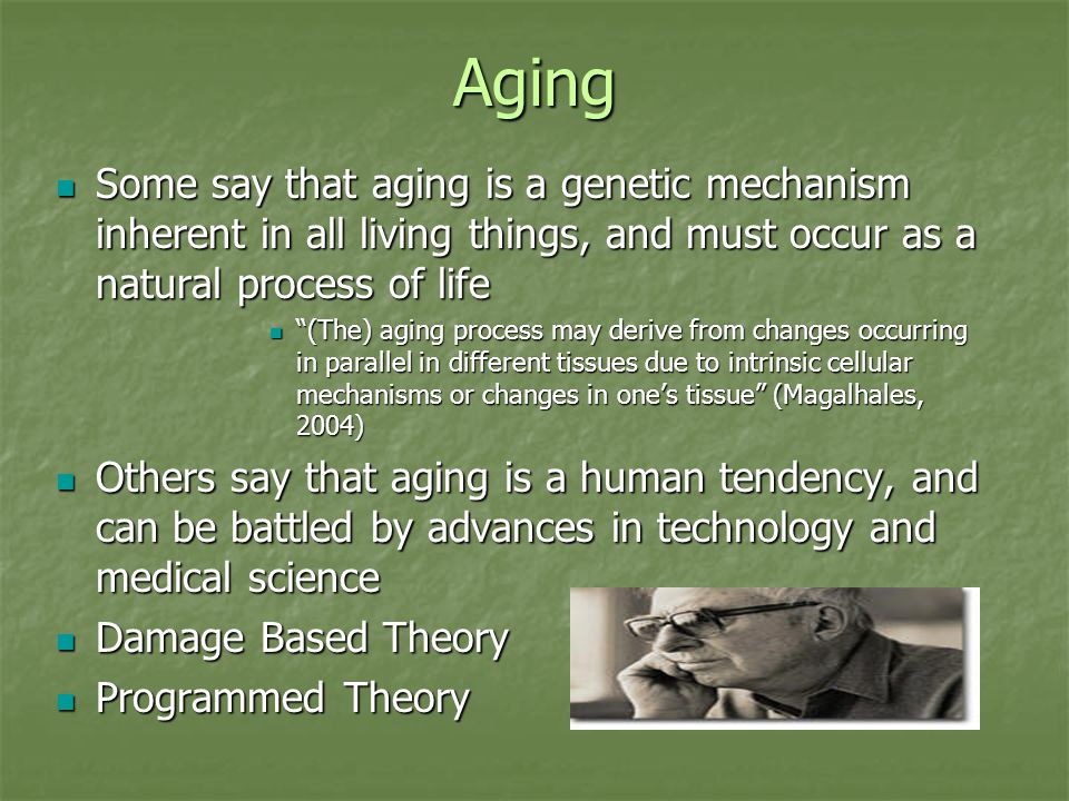 Aging Some say that aging is a genetic mechanism inherent in all living things, and must occur as a natural process of life Some say that aging is a genetic mechanism inherent in all living things, and must occur as a natural process of life (The) aging process may derive from changes occurring in parallel in different tissues due to intrinsic cellular mechanisms or changes in one's tissue (Magalhales, 2004) (The) aging process may derive from changes occurring in parallel in different tissues due to intrinsic cellular mechanisms or changes in one's tissue (Magalhales, 2004) Others say that aging is a human tendency, and can be battled by advances in technology and medical science Others say that aging is a human tendency, and can be battled by advances in technology and medical science Damage Based Theory Damage Based Theory Programmed Theory Programmed Theory