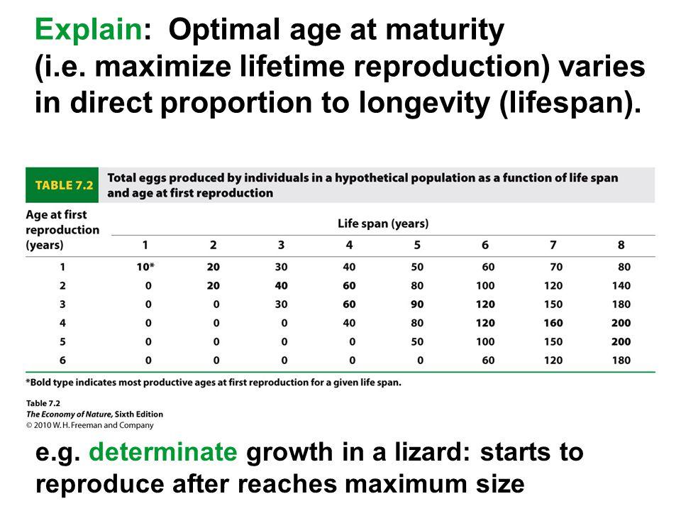 Explain: Optimal age at maturity (i.e.