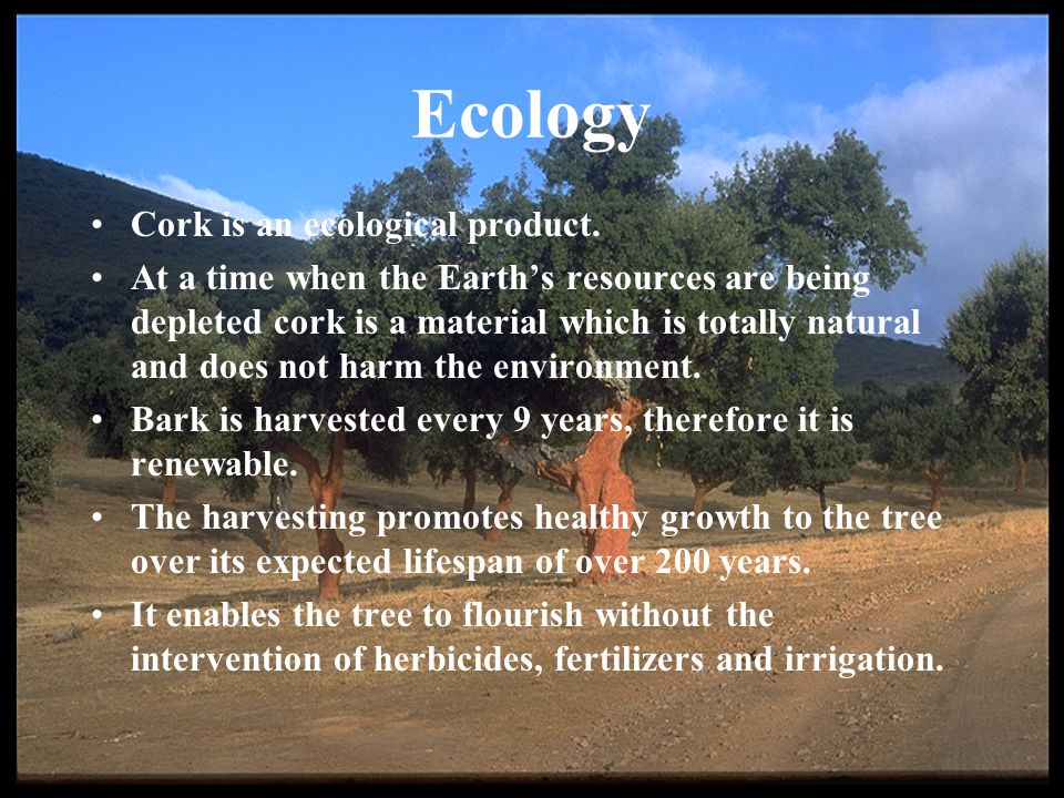 Ecology Cork is an ecological product.