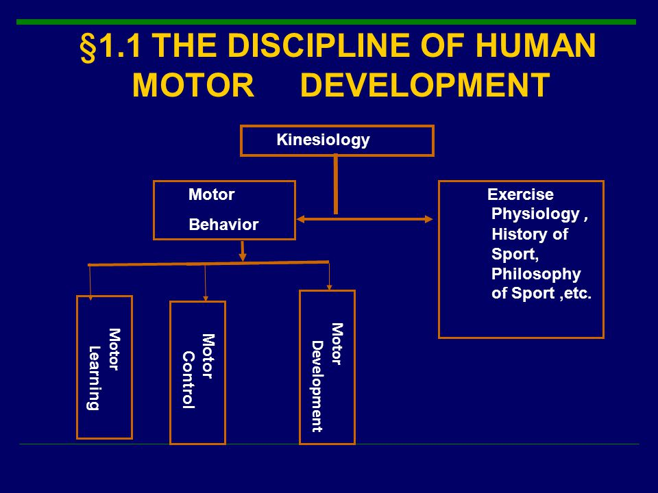 §1.1 THE DISCIPLINE OF HUMAN MOTOR DEVELOPMENT Motor Control Motor Development Motor L earning Kinesiology Motor Behavior Exercise Physiology, History