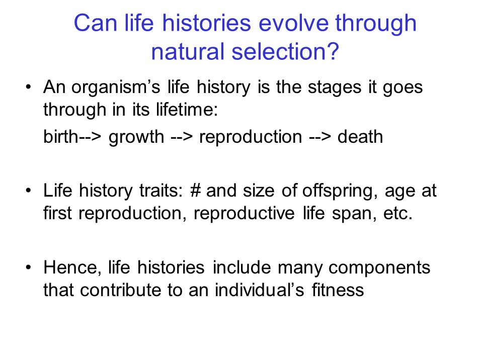 Can life histories evolve through natural selection? An organism's life history is the stages it goes through in its lifetime: birth--> growth --> rep