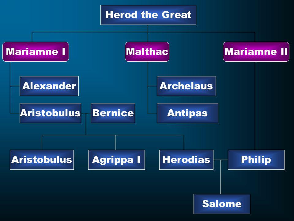 Herod the Great Mariamne IMariamne IIMalthac Alexander Aristobulus Archelaus Antipas Agrippa IHerodiasAristobulus Bernice Philip Salome