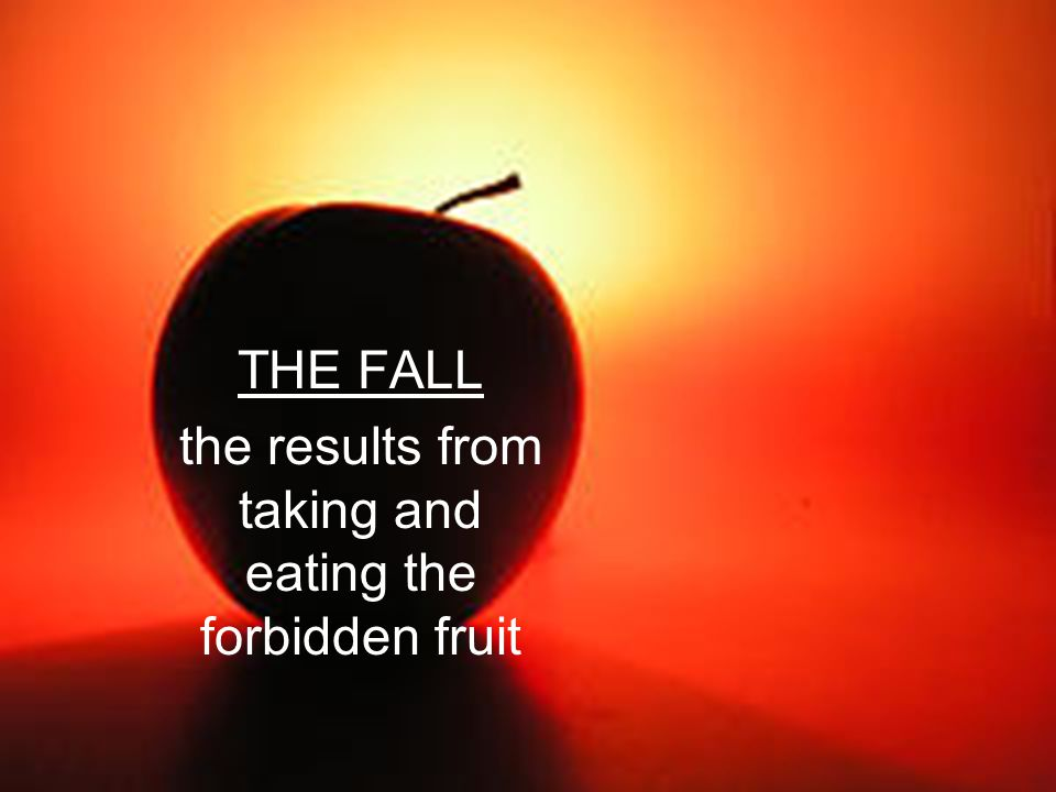THE FALL the results from taking and eating the forbidden fruit