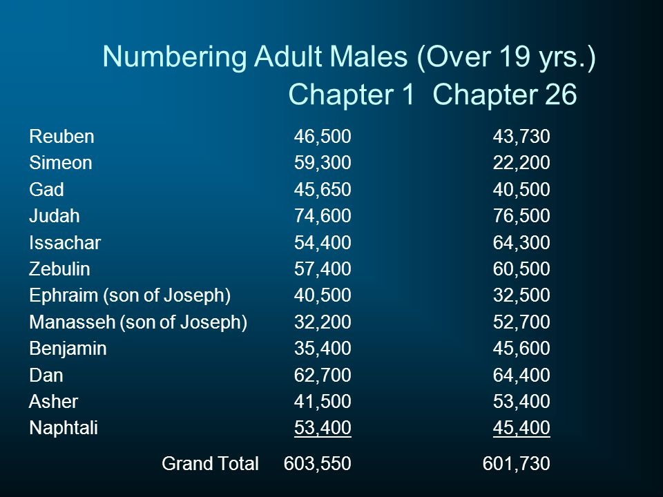 Numbering Adult Males (Over 19 yrs.) Chapter 1Chapter 26 Reuben46,50043,730 Simeon59,30022,200 Gad45,65040,500 Judah74,60076,500 Issachar54,40064,300