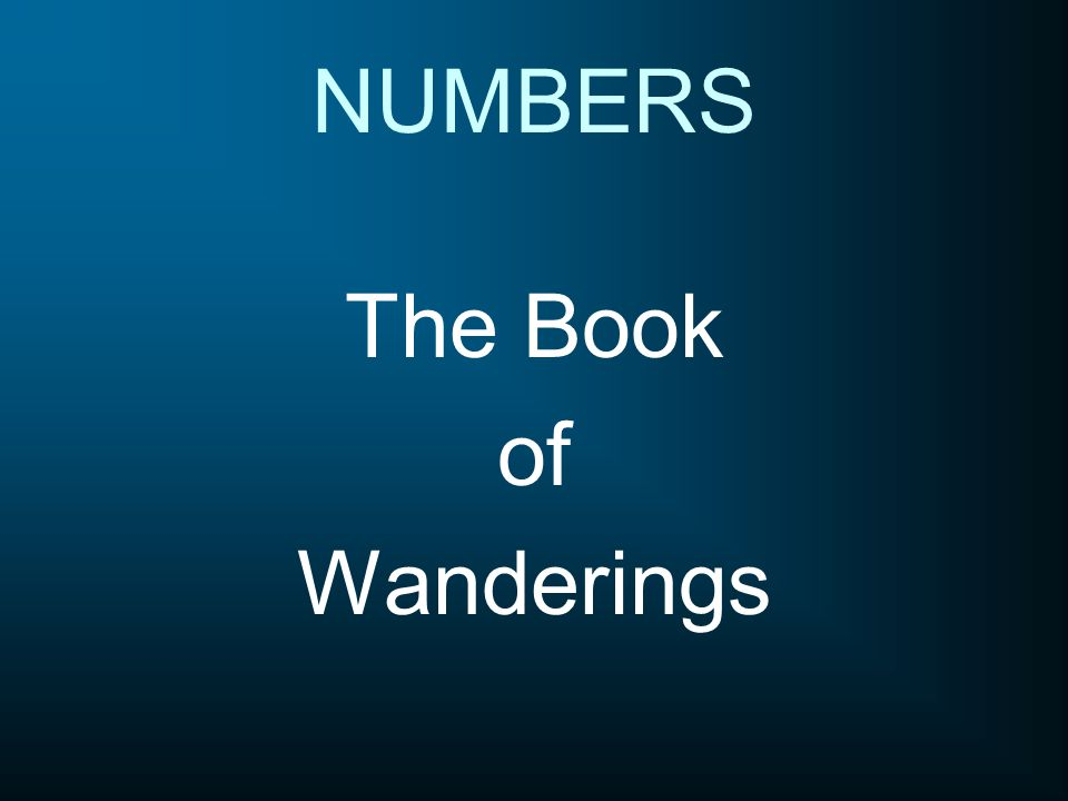 The Book of Wanderings NUMBERS