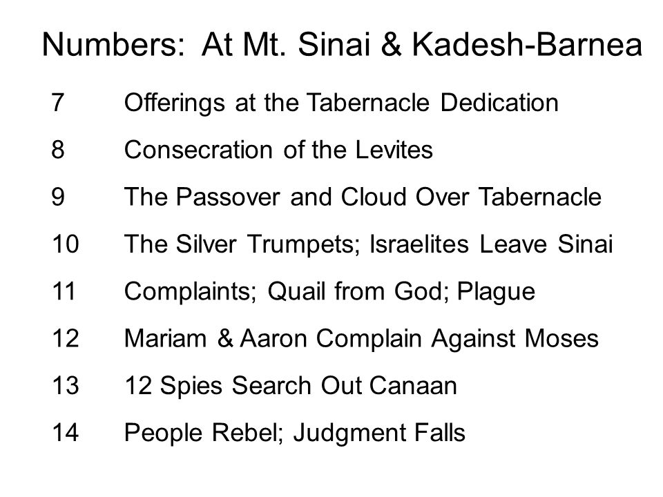 7Offerings at the Tabernacle Dedication 8Consecration of the Levites 9The Passover and Cloud Over Tabernacle 10The Silver Trumpets; Israelites Leave S