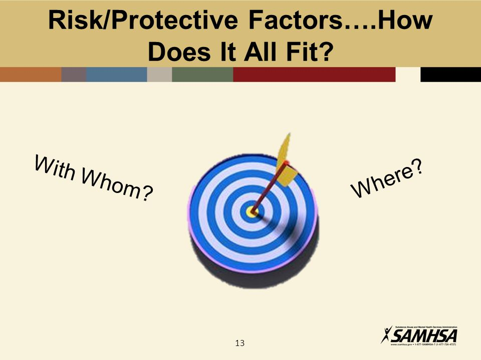 13 Risk/Protective Factors….How Does It All Fit Where With Whom