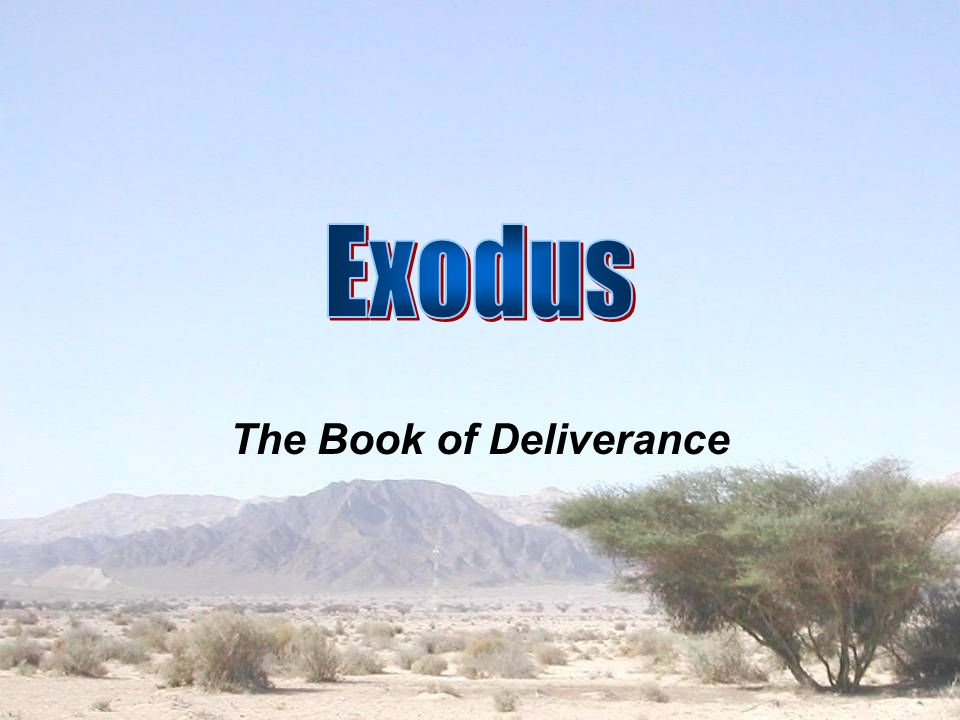 The Prophet A.The Call (Exo. 3:1-10) B. The Task 1.
