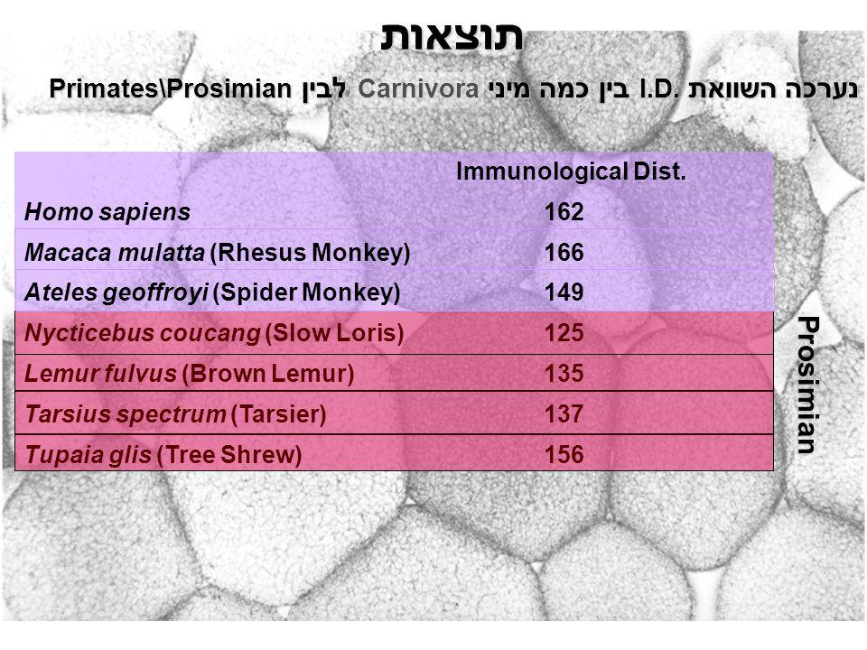 תוצאות נערכה השוואת I.D. בין כמה מיני Carnivora לבין Primates\Prosimian Immunological Dist.