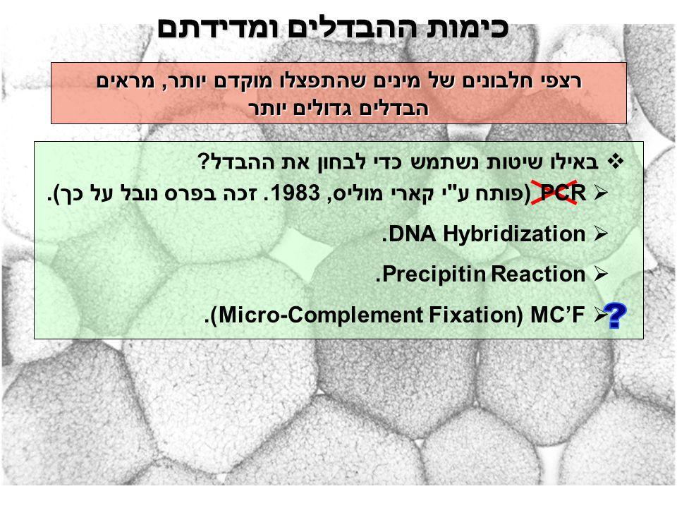כימות ההבדלים ומדידתם  באילו שיטות נשתמש כדי לבחון את ההבדל? רצפי חלבונים של מינים שהתפצלו מוקדם יותר, מראים הבדלים גדולים יותר  PCR (פותח ע